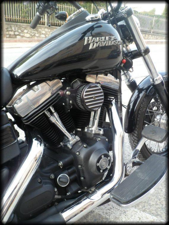 HD Street Bob 2012 (6)