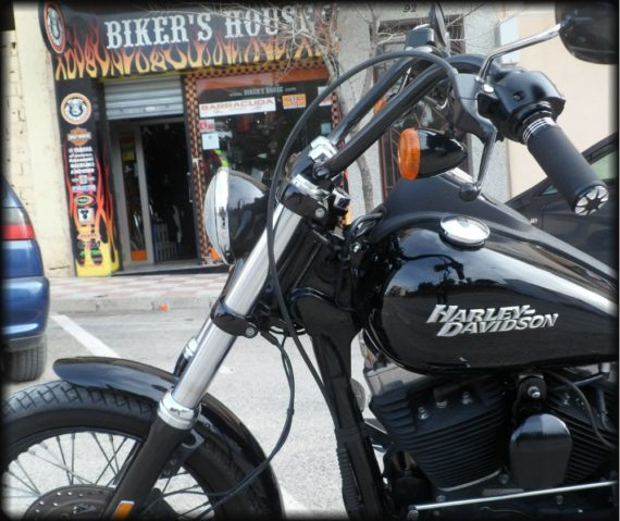 HD Street Bob 2012 (7)