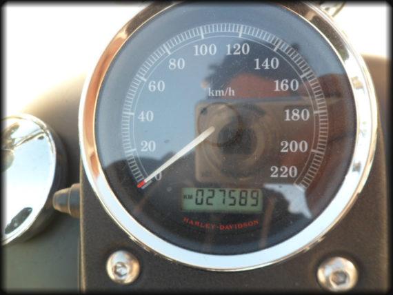 HD DYNA 2008 (6)