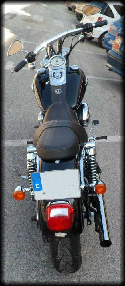 HD DYNA 2007 (1)