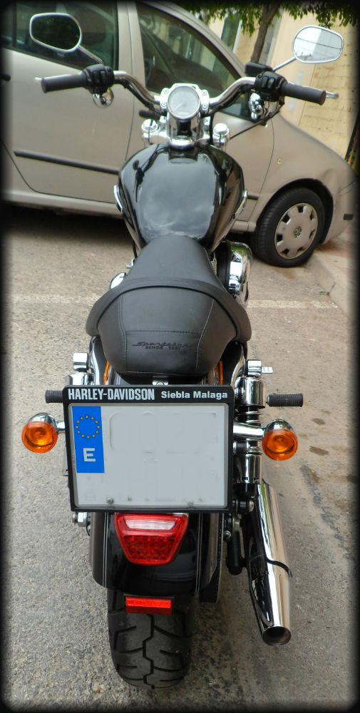 HD SPORTSTER 1200 2012 (10)