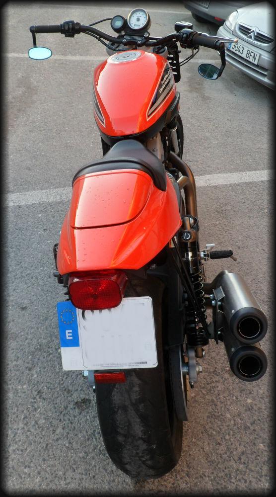 HD XR 1200 R (7)