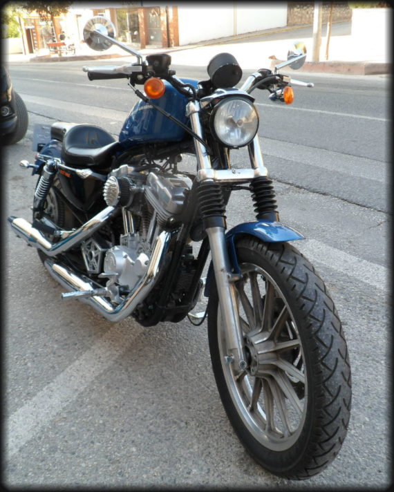 HD SPORTSTER 883 CARBURACION (4)