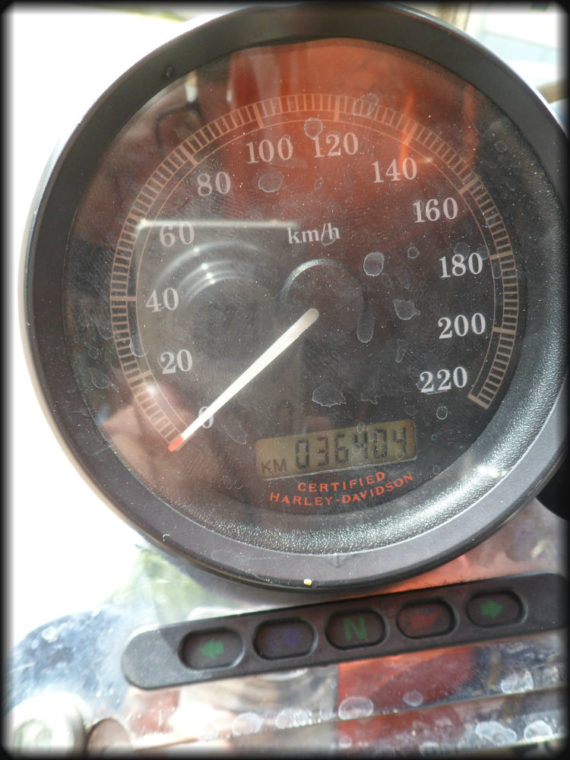 HD SPORTSTER 883 2004 CARBURACION (8)