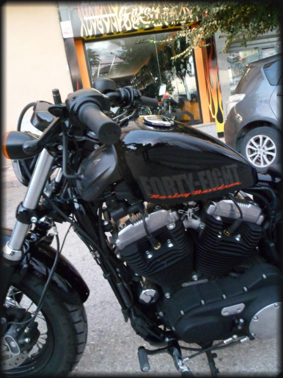 HD FORTY EIGHT 2015 (8)