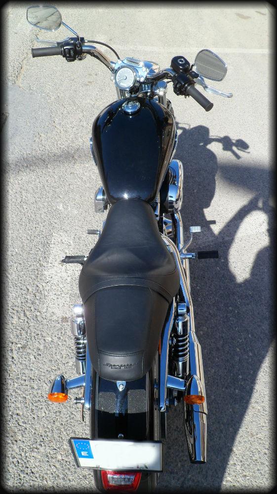 HD Sportster 1200 Custom (6)