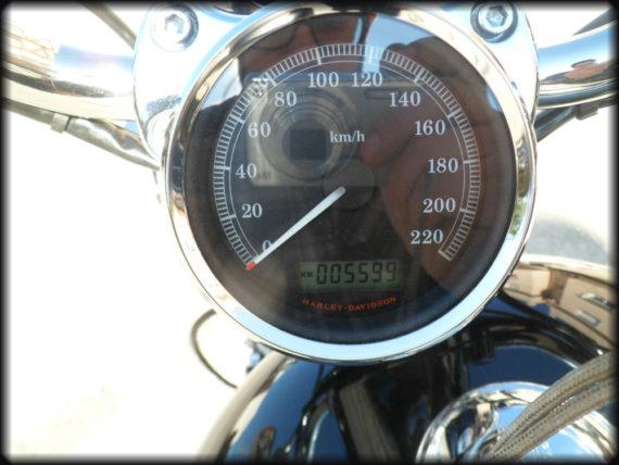 HD Sportster 1200 Custom (8)